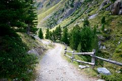 Rocky trail leading to valley surrounded by forests and high mountains in Swiss Alps Stock Images
