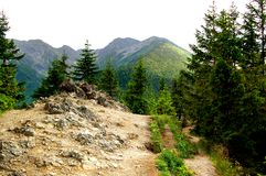 Rocky trail on a mountain hill Royalty Free Stock Image