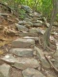 Rocky Trail på att hänga vaggar delstatsparken Royaltyfri Fotografi