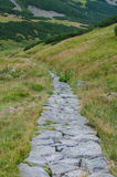 Rocky trail in summer going forward Royalty Free Stock Images