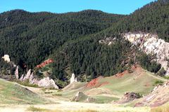 Rocky Trees. Tree lined stretch of mountains Stock Images