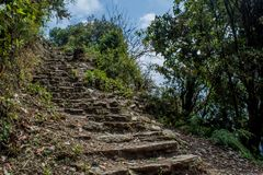 Rocky Trekking Pathway In The Forest At Mardi Himal Trek Royalty Free Stock Image