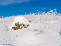 Rocky tundra hill snow covered winter wonderland Stock Photo