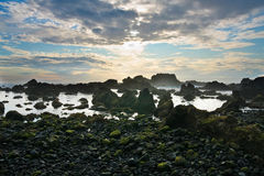 Rocky volcanic coastline with sunset, Pico island Stock Image