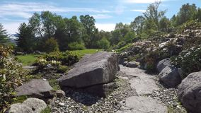 Rocky walkway in bright sunshine with plants and flowers stock video footage