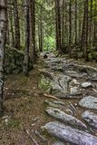 Rocky walkway road Royalty Free Stock Images