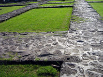 Rocky walkways with grass Stock Photography