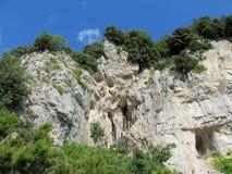 Rocky wall and green at Sentiero degli  Dei Royalty Free Stock Photos