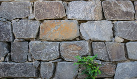 Rocky wall Royalty Free Stock Image