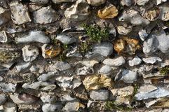 Rocky Wall. Vegetation covered rocky castle wall Royalty Free Stock Images