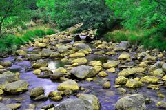 Rocky water stream Stock Photo
