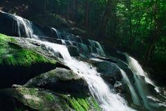Rocky Waterfall i frodig skog royaltyfri foto
