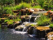 Rocky waterfall surrounded by palms Stock Image