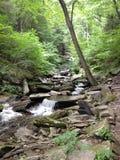 Rocky Waterfalls. Rickett's Glen Falls Stock Images