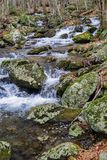 Rocky Wild Trout Stream in the Blue Ridge Mountains. A vertical view of a rocky wild mountain trout stream, located in the Blue Ridge Mountains of Virginia, USA Stock Image