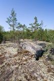Rocky wood Stock Image