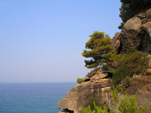 Rocky and wooded shore. Cliffs with pine trees above the sea. Coast of the Greek Islands Stock Photos