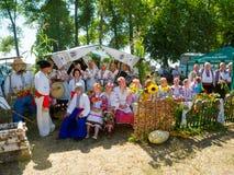 Roczna agro wystawa SUMY-2013 Zdjęcie Stock