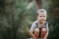4 roczniaka chłopiec w drewnach Zdjęcie Royalty Free