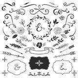 Roczników dekoracyjni elementy z literowaniem ręka patroszony wektor ilustracja wektor