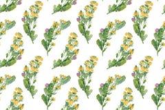 Roczników dzicy kwiaty Bezszwowy wzór z olej malującym nostrzykiem obrazy royalty free