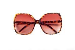 Roczników Eyeglasses zdjęcie royalty free