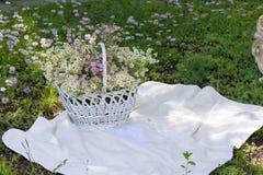 Roczników kwiaty w białym koszu i rama Zdjęcia Stock