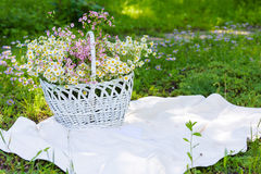Roczników kwiaty w białym koszu i rama Obraz Stock