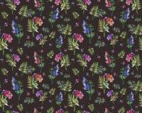 Roczników kwiecistych ziele bezszwowy wzór z lasu liściem i kwiatami Druk dla tekstylny tapetowy niekończący się Pociągany ręczni Zdjęcia Royalty Free