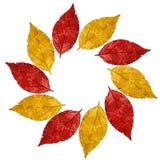 Roczników liści rama z colours Hiszpania flaga państowowa Zdjęcia Stock