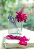 Roczników narzędzia i róże Fotografia Stock