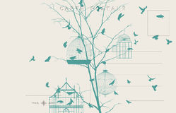 Roczników ptaków pocztówka 4 Zdjęcia Stock