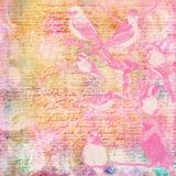 Roczników ptaków tekstura Zdjęcie Royalty Free