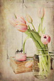 Roczników Różowi tulipany Zdjęcia Stock