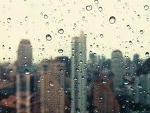 Roczników Raindrops Zdjęcia Stock