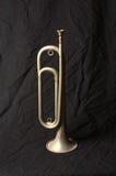 rocznik bugle Zdjęcie Royalty Free