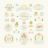 Rocznik dekoracyjne retro odznaki ustawiać Obraz Royalty Free