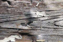 Rocznik drewniana ściana trzy Fotografia Stock
