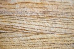 Rocznik drewniana tnąca deska z udziałami narysy Obrazy Stock