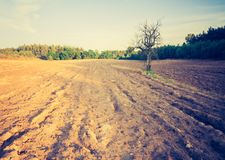 Rocznik fotografia zaorany pole krajobraz Obraz Stock