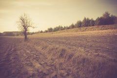 Rocznik fotografia zaorany pole krajobraz Zdjęcie Stock