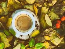 Rocznik fotografii filiżanka kawy na ziemi wśród żółtego falle Obrazy Royalty Free
