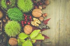 Rocznik jesieni pojęcie Zdjęcia Stock