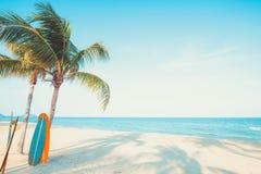 Rocznik kipieli deska z drzewkiem palmowym na tropikalnej plaży obrazy royalty free
