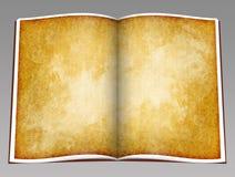 Rocznik konceptualny otwiera książkę royalty ilustracja