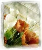 rocznik kwiatów Fotografia Royalty Free