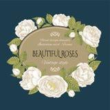 Rocznik kwiecista karta z ramą białe róże Zdjęcia Royalty Free