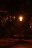 Rocznik lampa w jesień parku Zdjęcia Royalty Free