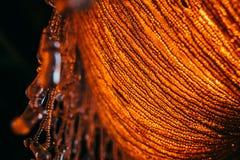Rocznik lampy krystaliczni szczegóły Obrazy Stock