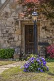Rocznik latarnia z purpurowym clematis pełno kwiaty vining wokoło dna mnie i wieśniaka chałupy rockowy drzwi zamazywał za obraz stock